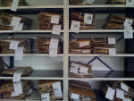 herbarium-specimens-awaiting-collection